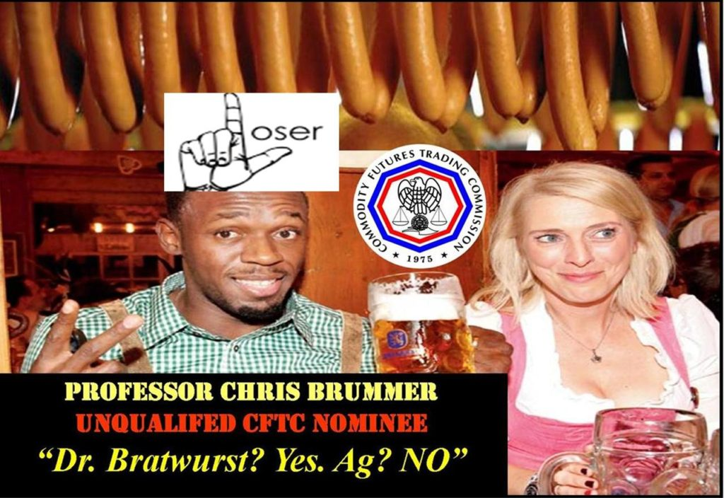 CHRIS-BRUMMER-GEORGETOWN-LAW-PROFESSOR-CFTC-NOMINATIONS-REJECTED-GERMANIC-STUDIES
